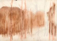 Birch-Woods-pastel-rough