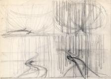 Birch-woods-prelims