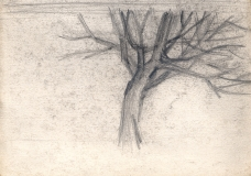 Tree-pencil-1