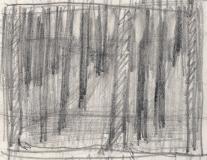 Woods-rough-prelim
