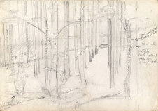 Sycamore-and-Pine-woods-rough-prelim-1
