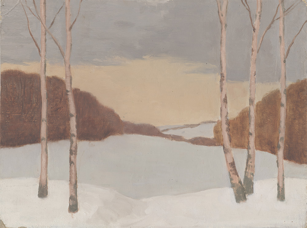 silver birches in a snowy landscape