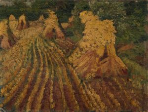 suffolk-harvest-field-compiled-and-flattened