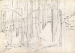 sycamore-and-pine-woods-rough-prelim