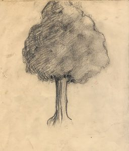 tree-with-foliage-pencil-study-cropped