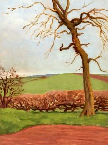 tree-in-field-near-moorgreen-compiled