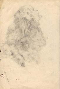 tree-with-foliage-pencil-study-2