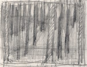 woods-rough-prelim