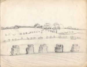 15__harvest-field_pencil