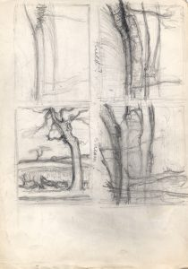 landscapes-with-trees_sketchbook_2