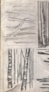 leaning-hawthorn-other-trees_sketchbook_fragment_3_small